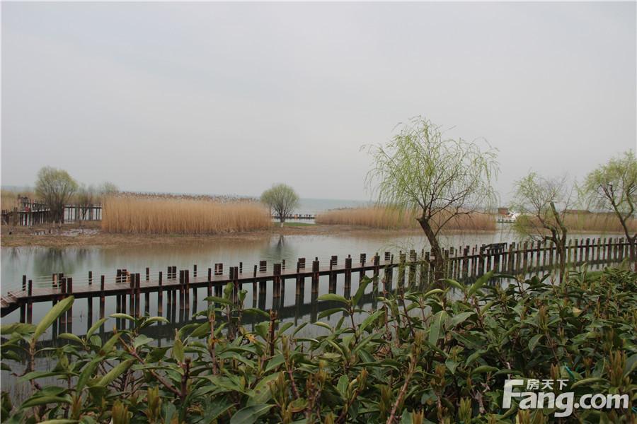华丽家族太湖汇景
