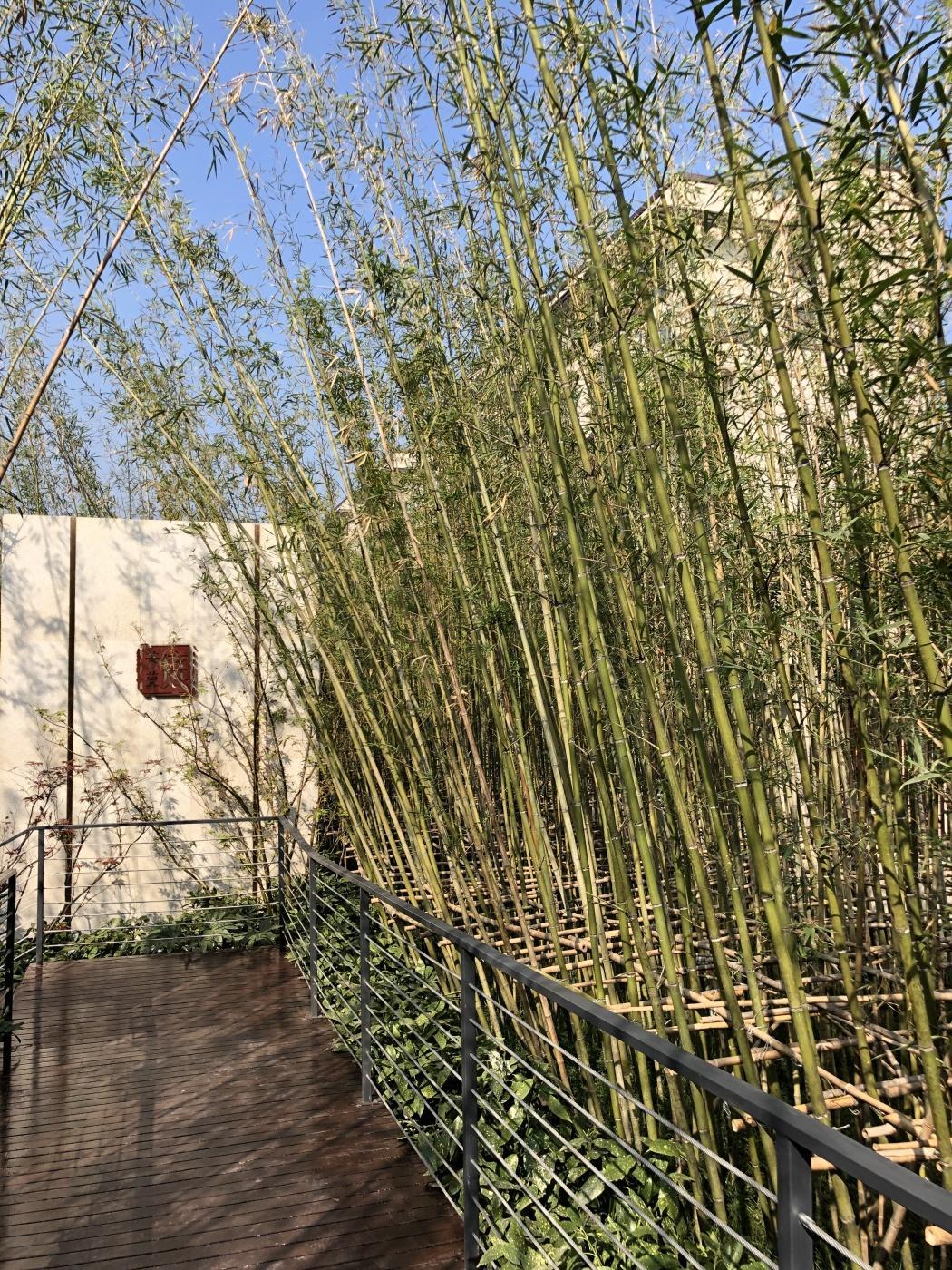 国展和昌芳草庭