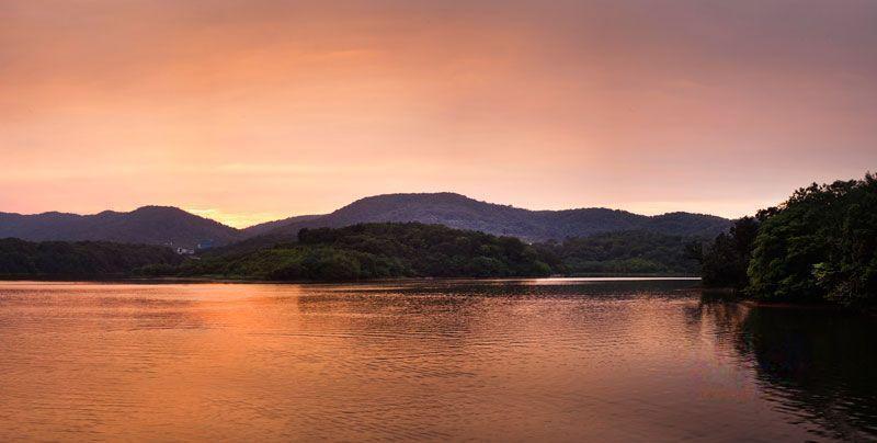 佛手湖森林庄园项目